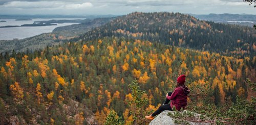 Koli Nationalpark Finnland